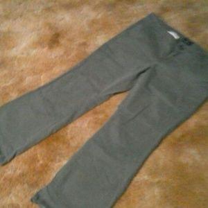 AEO Kickboot pants 16